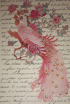 Vintage Pink Peacock Print