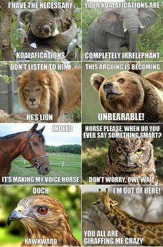 Koalafications. Ahahahaha animal puns in argument form!