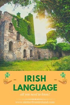 Read our collection of articles about Irish language, proverbs and traditions, and get closer to this beautiful country! *** #Ireland #irish #history #culture #ancestry #family Ireland Vacation, Ireland Travel, Irish Customs, Ireland Weather, Irish Proverbs, Irish Language, Erin Go Bragh, Irish Quotes, Ireland Wedding