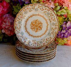 6 Antique Haviland Limoges Porcelain Plates ~ Gold Center ~ Medallion ~ Floral #HavilandLimoges