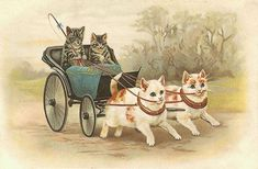 Cats driving cat-drawn carriage