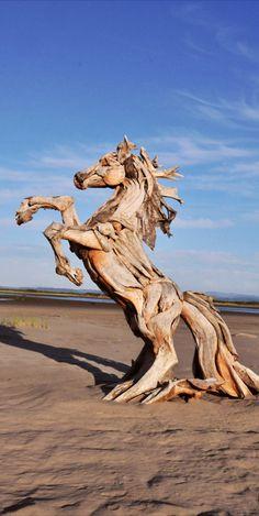 Horse driftwood sculpture on the beach