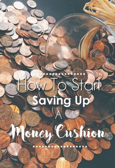 How to Start Saving Up a Small Money Cushion - L Bee and the Money Tree