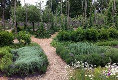 Swedish herb and hops garden via Tone on Tone blog