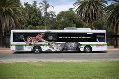 Auto • Perth Zoo
