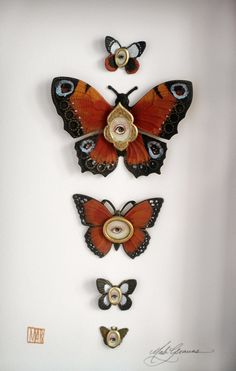 Cabinet of Curiosities Specimen no. 16 - The Autumn Moth Eye Flies - original 3D insect paintings © Mab Graves