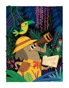 The Elusive Green-Beaked Warbler for Heartwork & Target House, Andrew Kolb