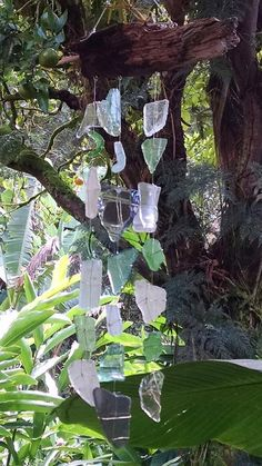 Hawaiian sea tumbled glass and driftwood wind chimes, #58 in series by Kalikascardsandgifts on Etsy
