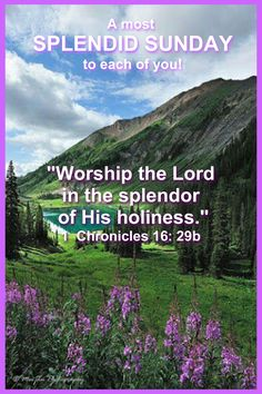 Happy Sunday Images, Happy Sunday Quotes, Good Morning Quotes, Scripture Quotes, Scriptures, 1 Chronicles 16, Days Of Week, Worship The Lord, Birthday Blessings