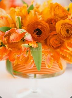 Blooming orange floral arrangement by Ariella Chezar.  So simple yet so clever with the vase.