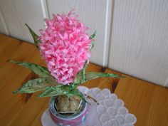 Výroba hyacintu