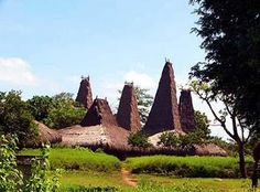 19.East Nusa tenggara (Kupang) Indonesia -Sao Ata Mosa Lakitana (Musalaki traditional house)