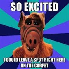 Excitable alf |Pinned from PinTo for iPad|