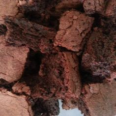 Mars Bar Brownies 280 g raw sugar 1 tsp baking powder 50 g cocoa or cacao powder 100 g plain flour 3 big size mars bars (broken into 3 pieces ) 180 g unsalted butter Large pinch of salt 3 eggs (lightly beaten) tsp vanilla extract Cocoa Brownies, Blondie Brownies, Sweets Recipes, Desserts, Mars Bar, Good Food, Yummy Food, Cacao Powder, Recipe Community