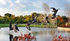 WatersEdge// Overland Park Kansas