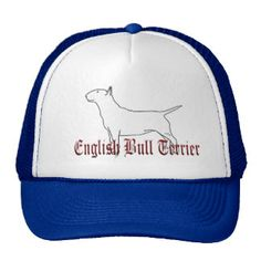 Het Engelse Pet van de Vrachtwagenchauffeurs van B