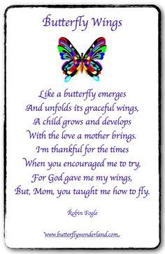 Butterfly Wings by: Robin Fogle
