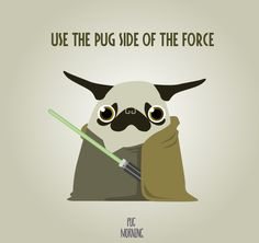 Pug force be with you.