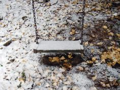 November Snow and Swing.  (www.schinster.com)