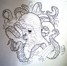 Octopus Sketch | octopus sketch | Tumblr