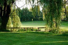 Tavistock Golf Course, 431 William Street S., Tavistock, Ontario, Canada