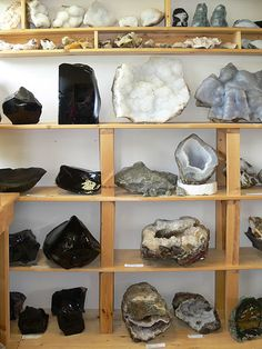 A collection of identified rocks and minerals on display