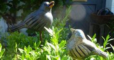 Meine Keramikvögel sind in liebevoller Handarbeit gefertigt. Meine Vögel sind handmodelliert und lassen sich auf Vogeltränken oder auf Stäben ins Beet setzen.