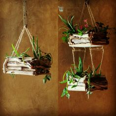 In stock - Driftwood hanging planters, a beautiful way to welcome spring! www.driftingconcepts.com