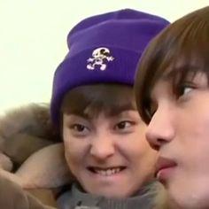 exo look like ( Kim Minseok Exo, Exo Ot12, Kaisoo, Meme Faces, Funny Faces, Chanyeol, Foto Meme, Simbolos Para Nicks, Exo Stickers