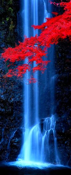 Minoo waterfall, just outside Osaka, Japan by Pete Wongkongkathep