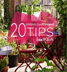 Ideas + DIYs - Spring gardening tips including things you may already have that can take on a new purpose – from old soda cans or coffee mugs to coat hangers and vases! 20 Clever Spring Gardening Tips from IKEA -
