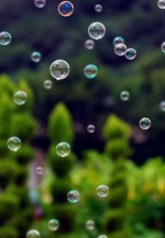 bubbles. fragile, elegant, perfect in form, an orb of beauty. why must they pop? I want them to sail to the heavens for the angel children to see.