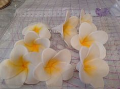 How to Make Tropical Flower Fondant Recipe