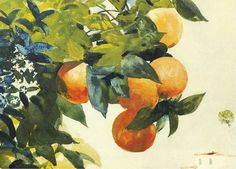 Oranges on a branch  -  Winslow Homer  1885Watercolour on paperPrivate Collection