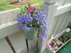 $1 hanging water pitcher planted with annuals, lobelia and perrenial dianthus (2012)
