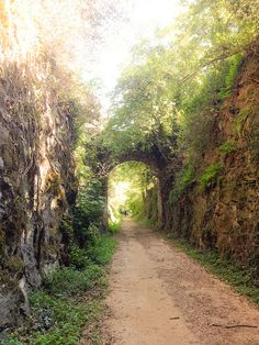 Vies Verdes in Costa Brava are old train ways turned into biking paths. It is such an interesting way to see the countryside!
