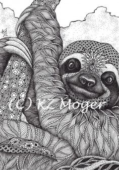 Sloth- matted print from original drawing