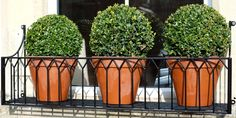 Image result for metal window boxes