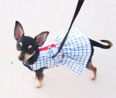 Dog Harness Dress Pet Collar Dress for that Small Tcup Chihuahua Pom Maltese Yorkie
