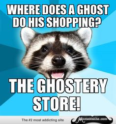 Lame Pun Coon: Where does a ghost do his shopping?...