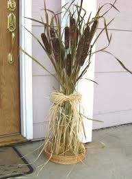Wouldn't you love to come to my door with this?