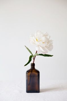 vintage finds for a modern world: brown bottles & peony / my little fabric