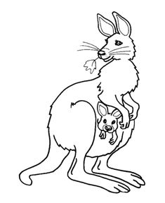 Female Kangaroo And Baby Coloring Page