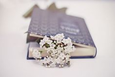 ercuillium:  Un libro è un giardino che ci portiamo con noi in tasca. by ´Brìllu on Flickr.