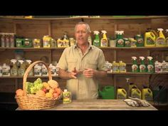 The Garden Gurus - Yates Nature's Way Fruit Fly Control Food Safety Tips, Fly Control, Food Hacks, Food Tips, Bodybuilding Recipes, Fruit Flies, Fruits And Vegetables, Saving Tips, Agriculture