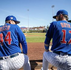 Cubs Players, Cubs Team, Go Cubs Go, Chicago Cubs Baseball, Cubbies, Major League, Boards, Husband, Life