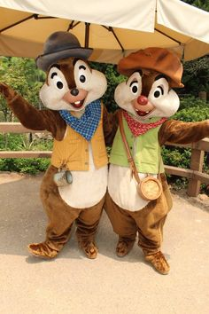 Chip and Dale Disney Cruise Line, Disney Parks, Walt Disney World, Disney World Magic Kingdom, Disney Magic, Disney Duos, Disney Movies, Disney Characters, Disney Films