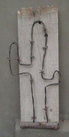 Mounted barbwire cactus on reclaimed fencing with horse shoe