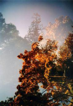 Autumn (c) Lomoherz.de, lomo