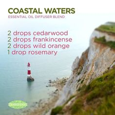 I love the smell of the ocean! And this essential oils diffuser blend brings the feeling of being on the coast right to you. Cedarwood's warm and woody scent evokes feelings of wellness and vitality. Frankincense promotes feelings of peace, relaxation, satisfaction, and overall wellness, while providing a warm and spicy aroma. Wild Orange releases a fresh, sweet, energizing aroma while also purifying the air. Rosemary can reduce nervous tension and occasional fatigue…